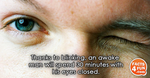 Thanks to blinking, an awake man will spend 30 minutes with his eyes closed.
