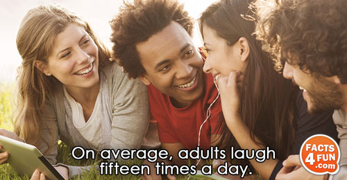 On average, adults laugh fifteen times a day.