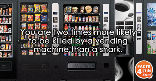 You are two times more likely to be killed by a vending machine than a shark.