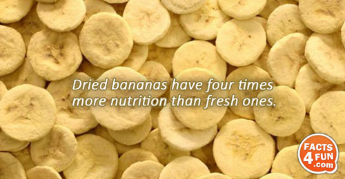 Dried bananas have four times more nutrition than fresh ones.