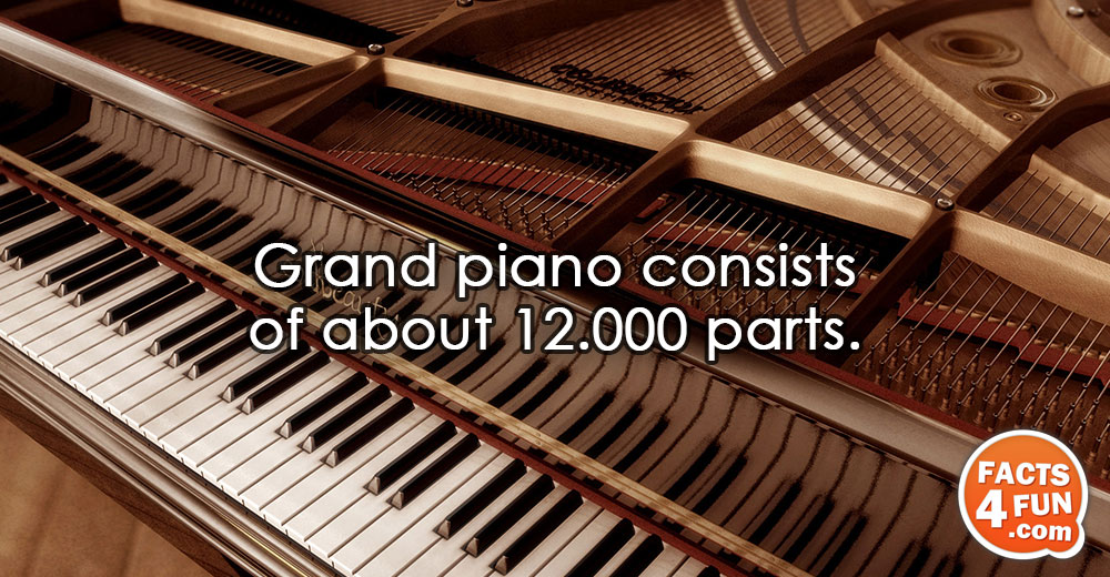 Grand piano consists of about 12.000 parts.
