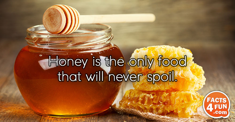 Honey is the only food that will never spoil.